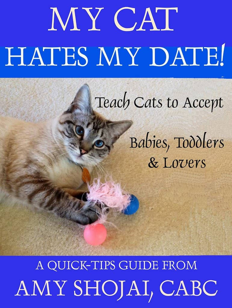My Cat Hates My Date! Introduction Tips for babies, toddlers