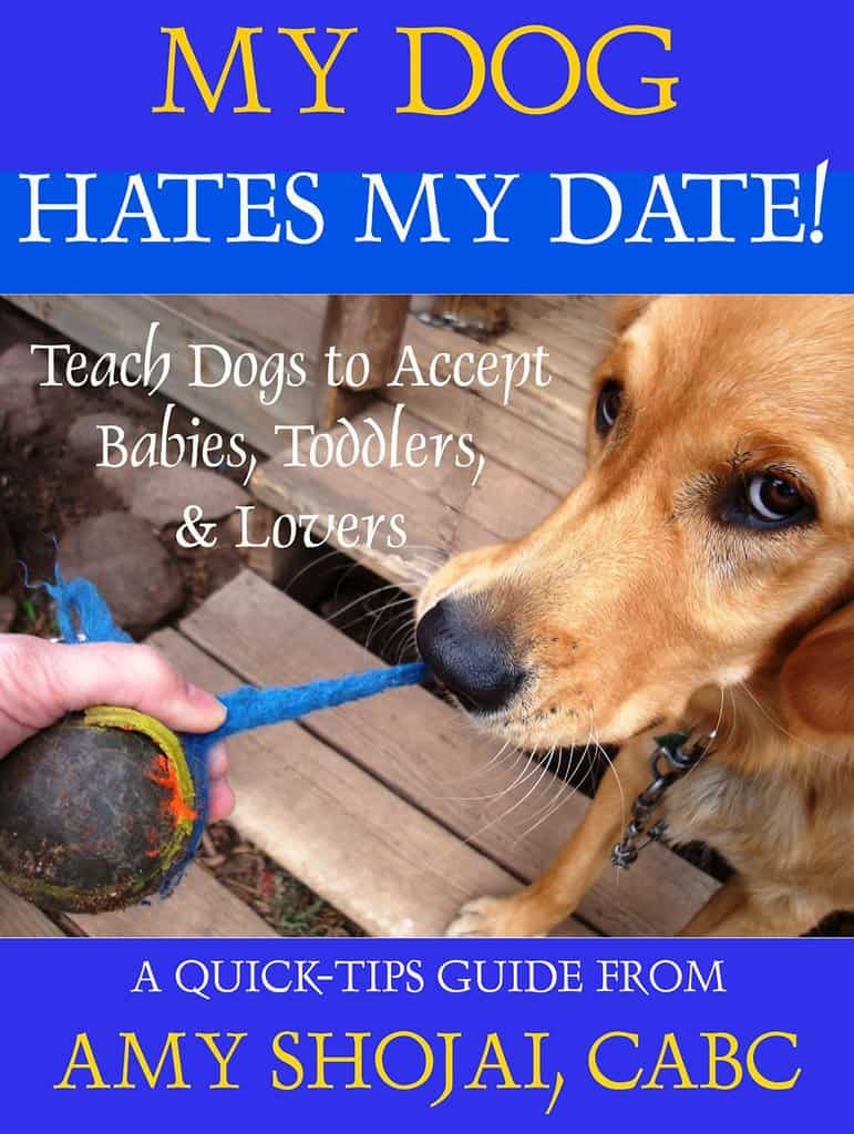 My Dog Hates My Date! Introduction Tips for babies, toddlers