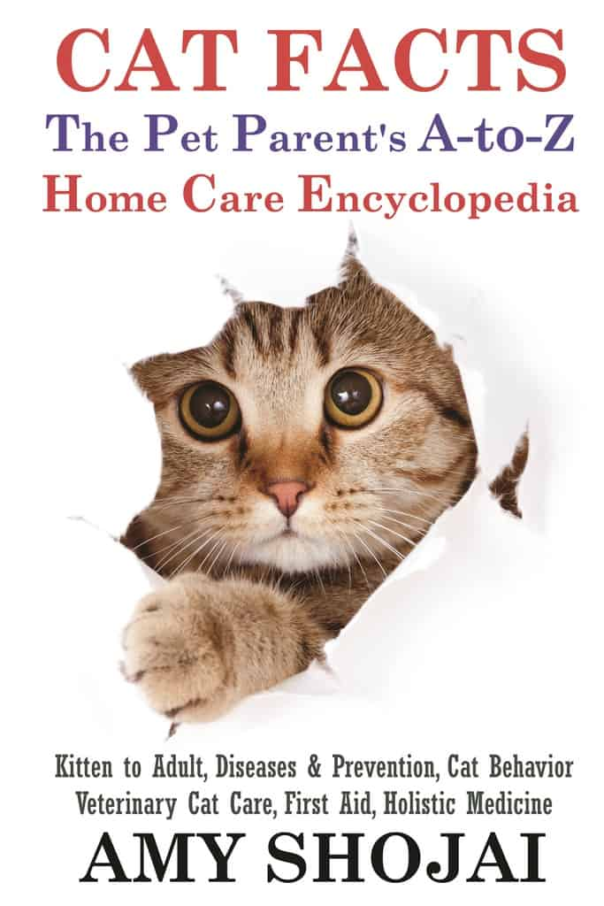 CAT FACTS, Your Everything Cat Care Book