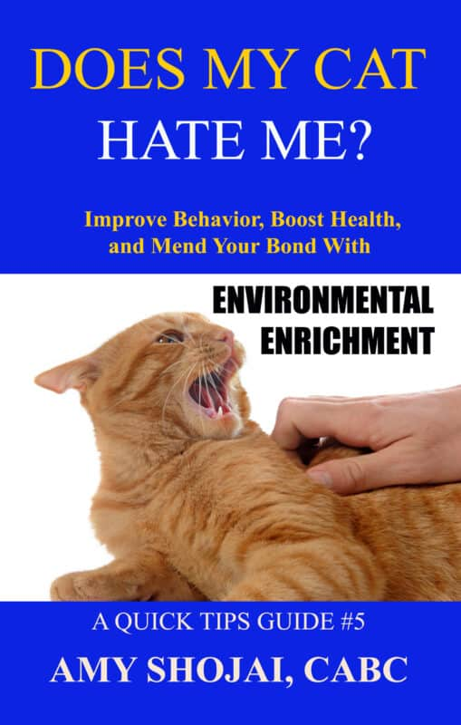 Does My Cat Hate Me? Improve Behavior, Boost Health, & Mend Your Bond With Environmental Enrichment